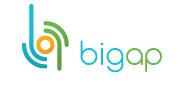 bigap.ru